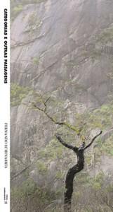 Fernando Echevarria: Categorias e outras paisagens
